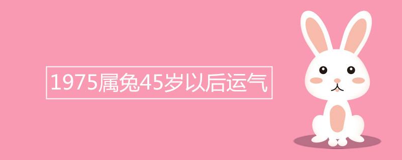 """975属兔45岁以后运气"""""""