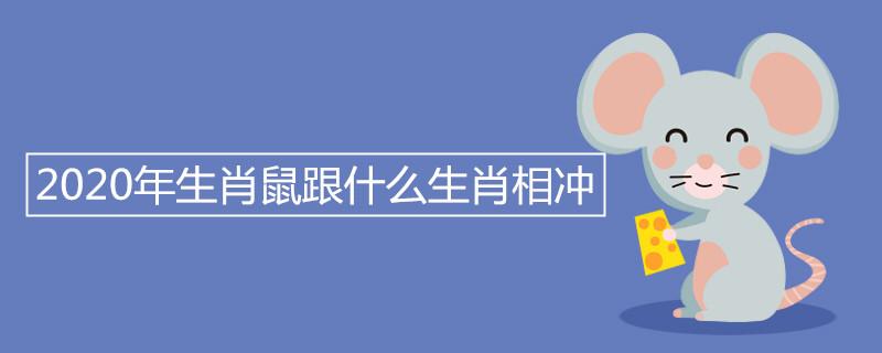 """020年生肖鼠跟什么生肖相冲"""""""