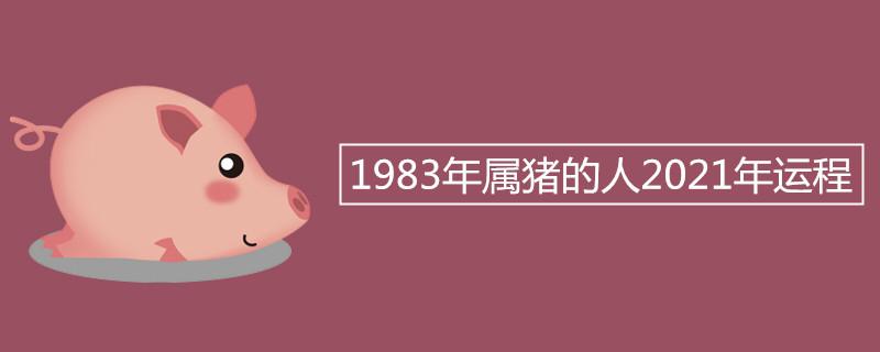 """983年属猪的人2021年运程"""""""