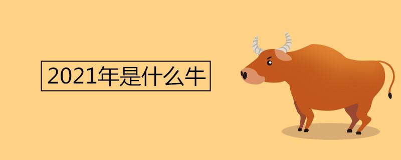 """021年是什么牛"""""""