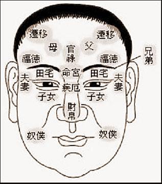 脸相的十二宫部位图