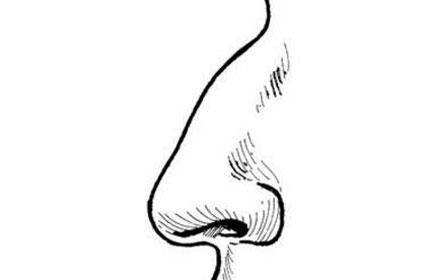 鼻子有驼峰面相的人命运会不好吗