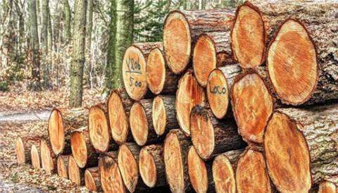 梦到木材预示什么 是不好的吗