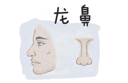 龙鼻对面相有什么影响呢