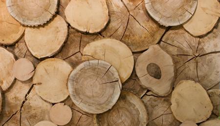 梦到木头 木材什么意思 是好兆头吗