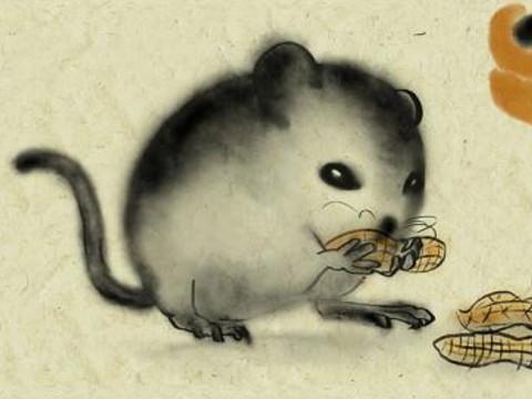 1972年出生的属鼠的人运势