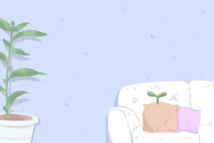 床头柜放什么东西招财 摆放风水植物
